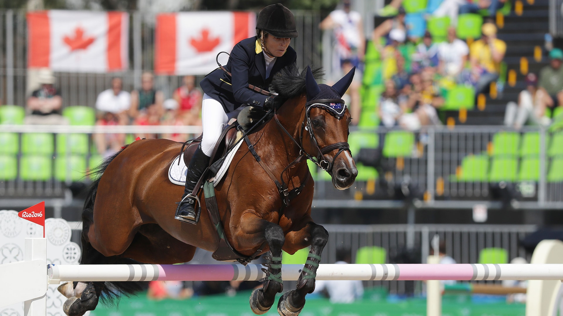 Image for Australia showjumpers can compete after teammate's cocaine scandal