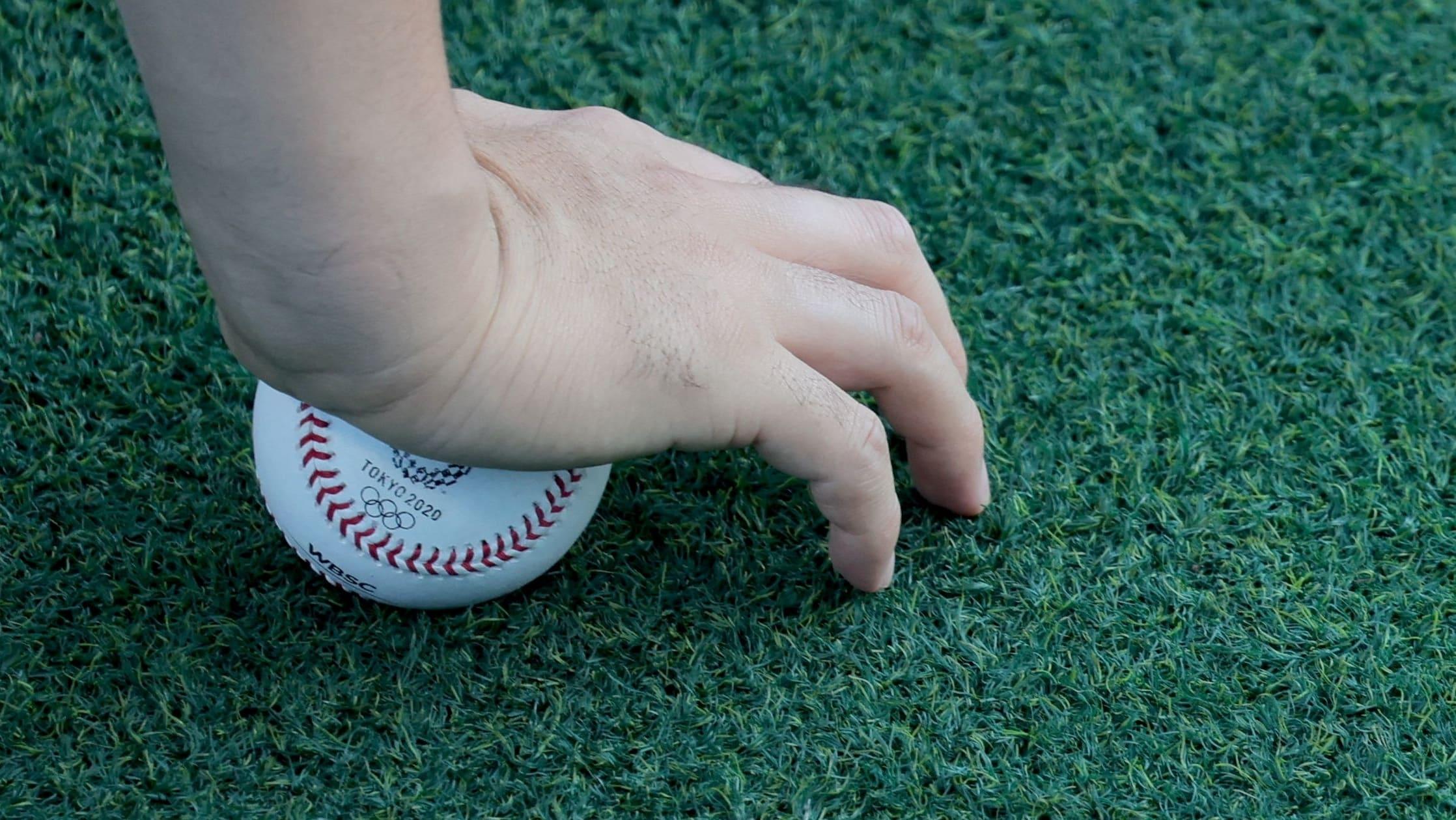 Foul-ball watchdogs sound their sirens, though few around to hear